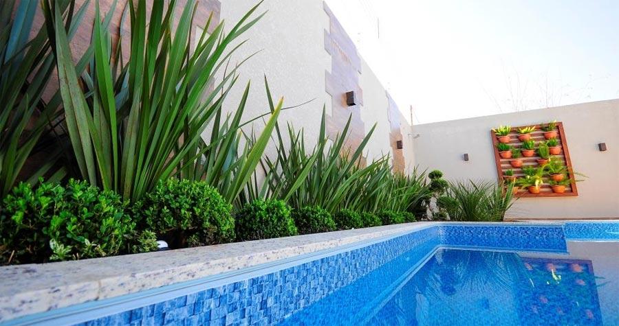 10 plantas para jardim que tem fácil manutenção