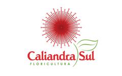 Floricultura Caliandra Sul